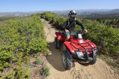ATV-Quad2-ZionPonderosa-Copyright2014