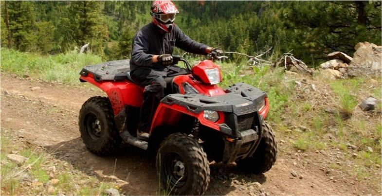 herold-wine-quad-bike-wild-x